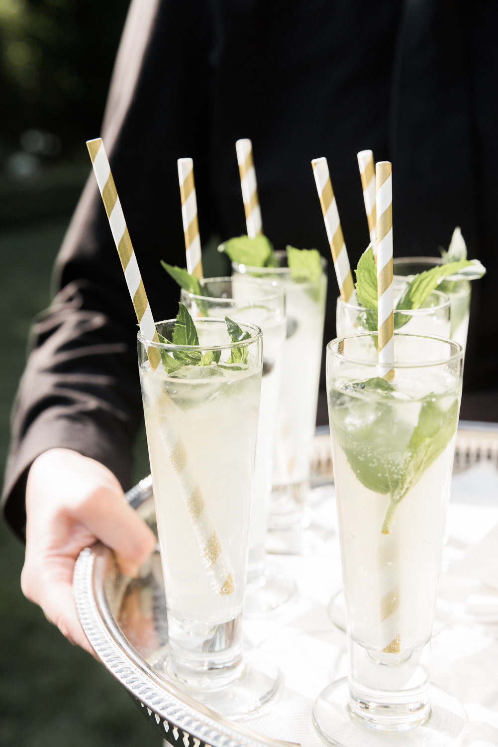 Fizzy gin cocktails with mint garnish