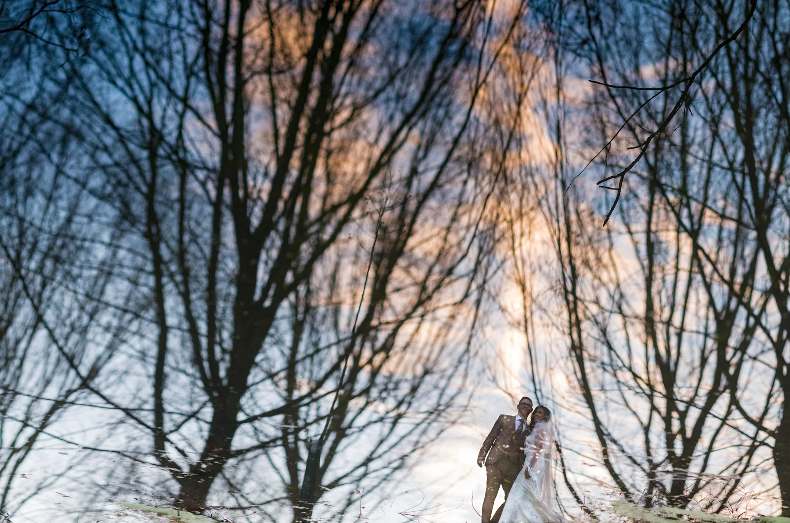 A Bride and Groom pose among trees in a reflection of a river in the Norfolk broads.