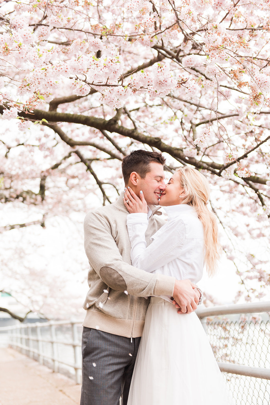 WASHINGTON_DC_CHERRY_BLOSSOMS_L+EJOFFOTO_-118