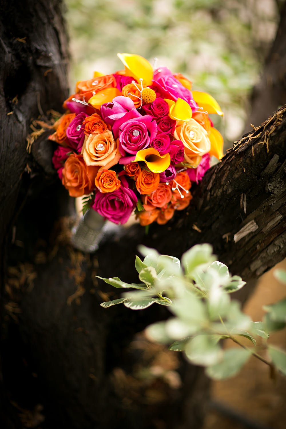 stunning bouquet image at leoness cellars