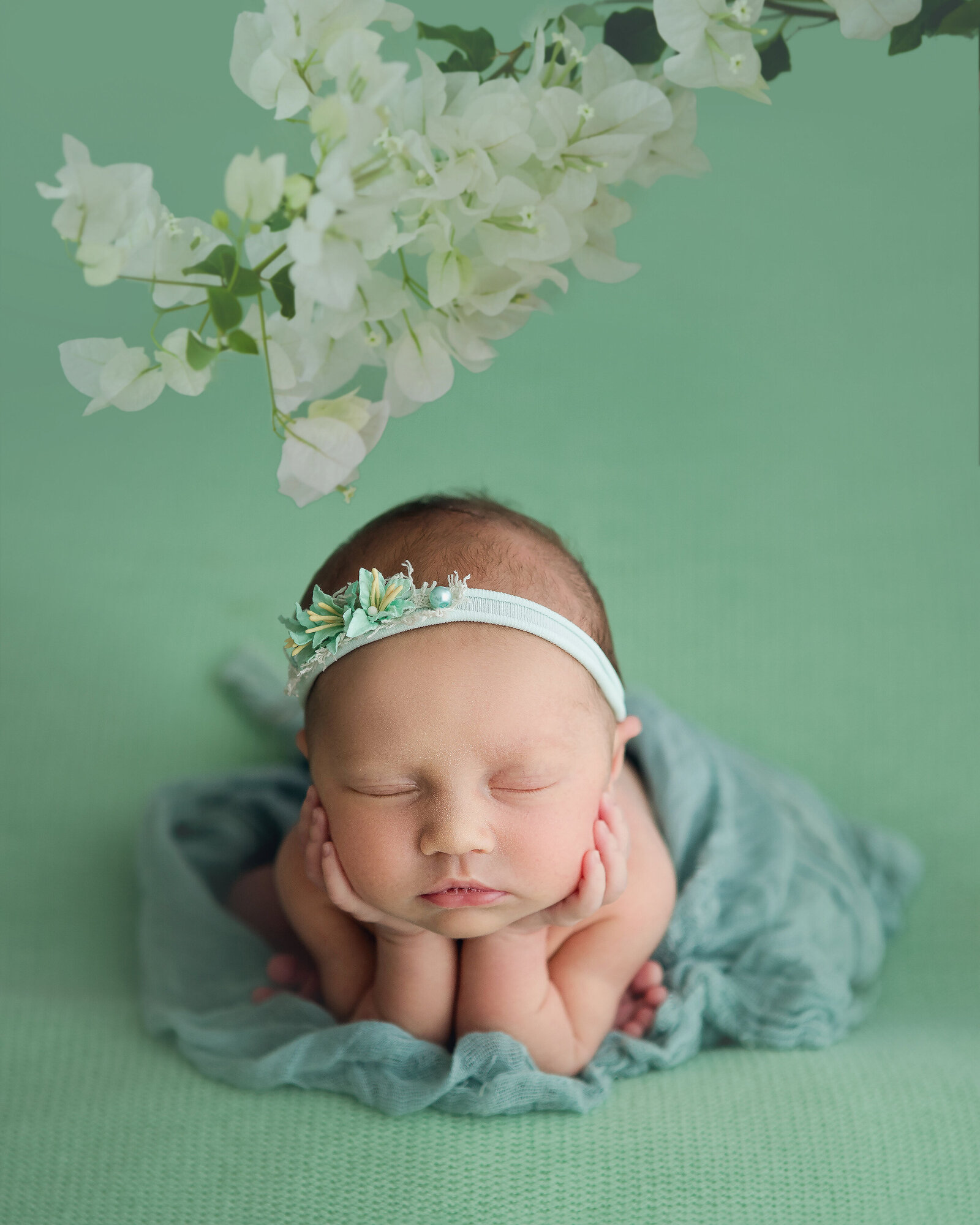 Professional studio portrait of newborn baby posed asleep, green backdrop
