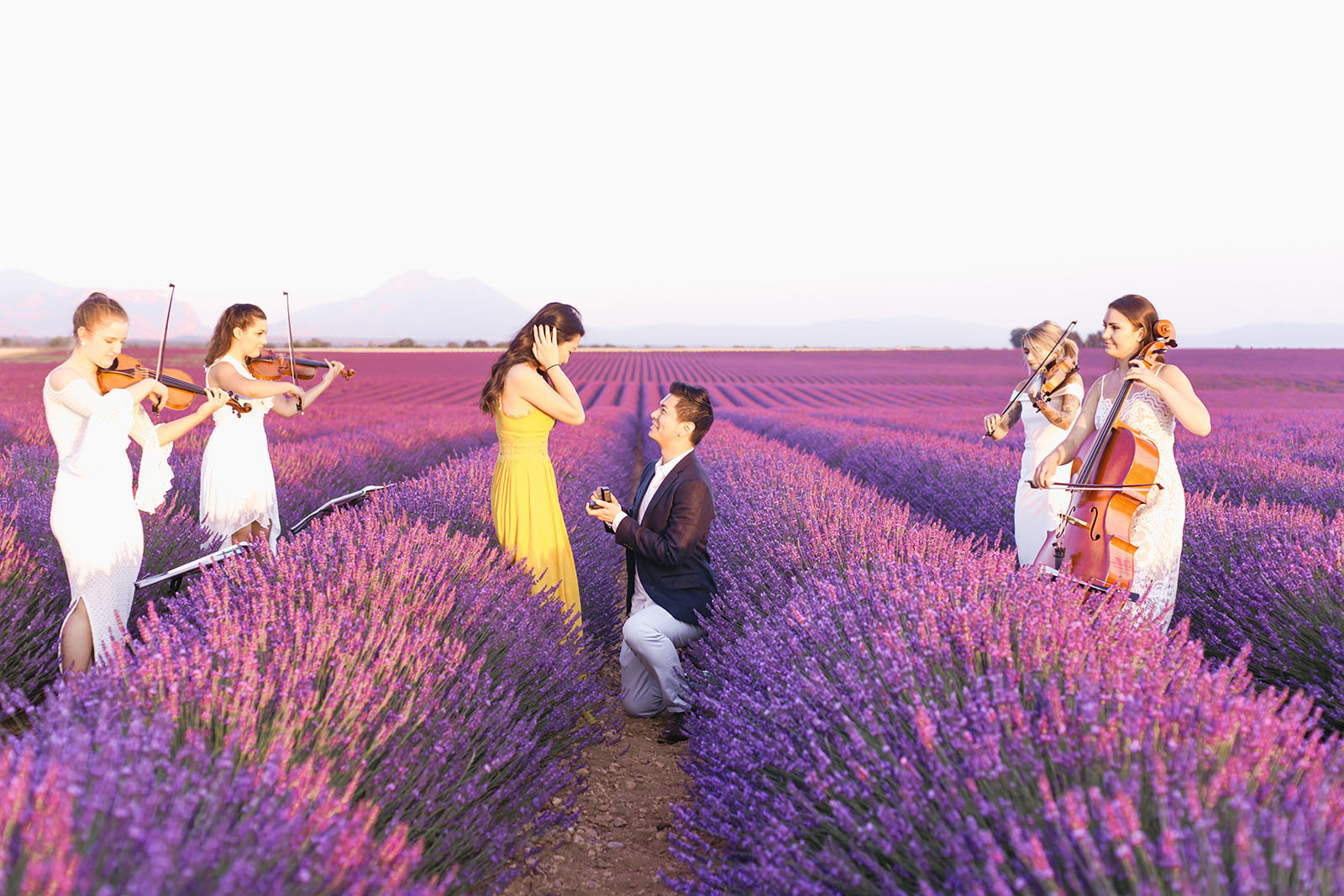 A romantic proposal at the lavender fields of Provence