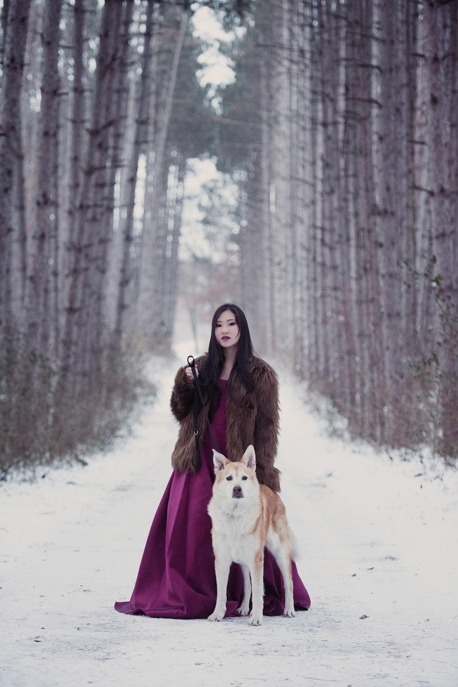 Senior picture of Asian girl with her husky dog in winter scene