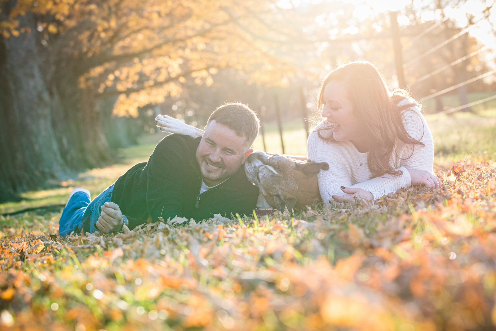 philadelphia-engagement-photographer-pennypark-dog