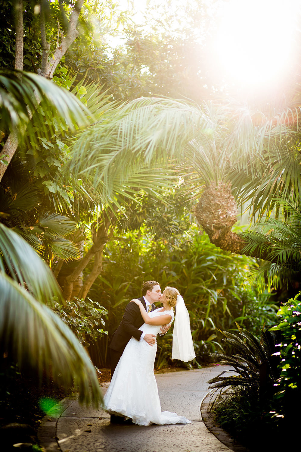 tropical trees with bride and groom kissing romantic