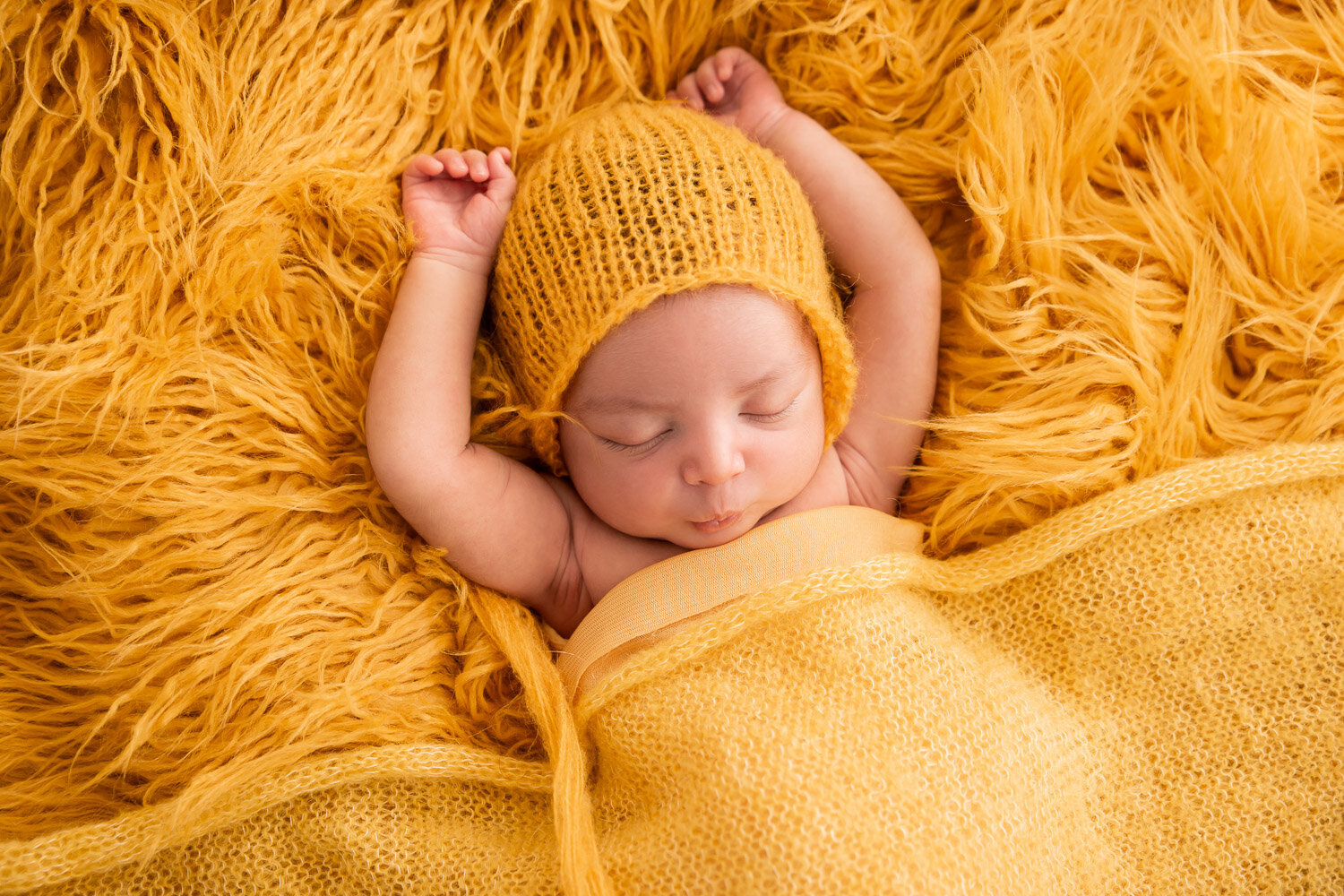 newborn portraits-5