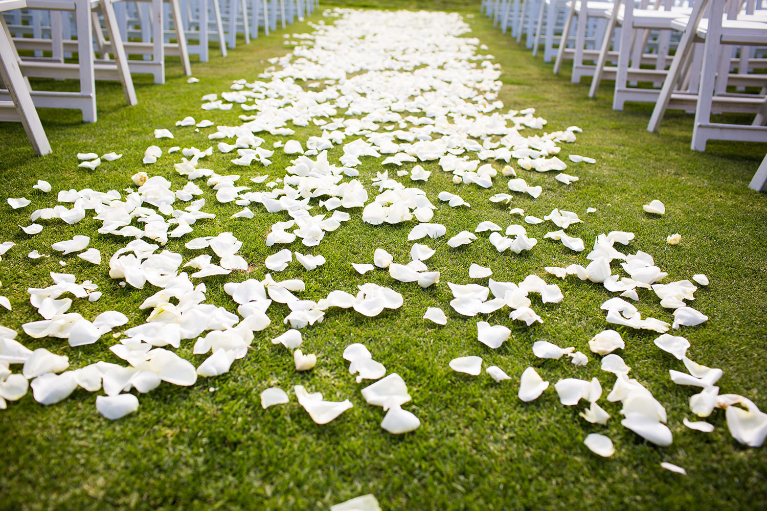 flower petals at ceremony