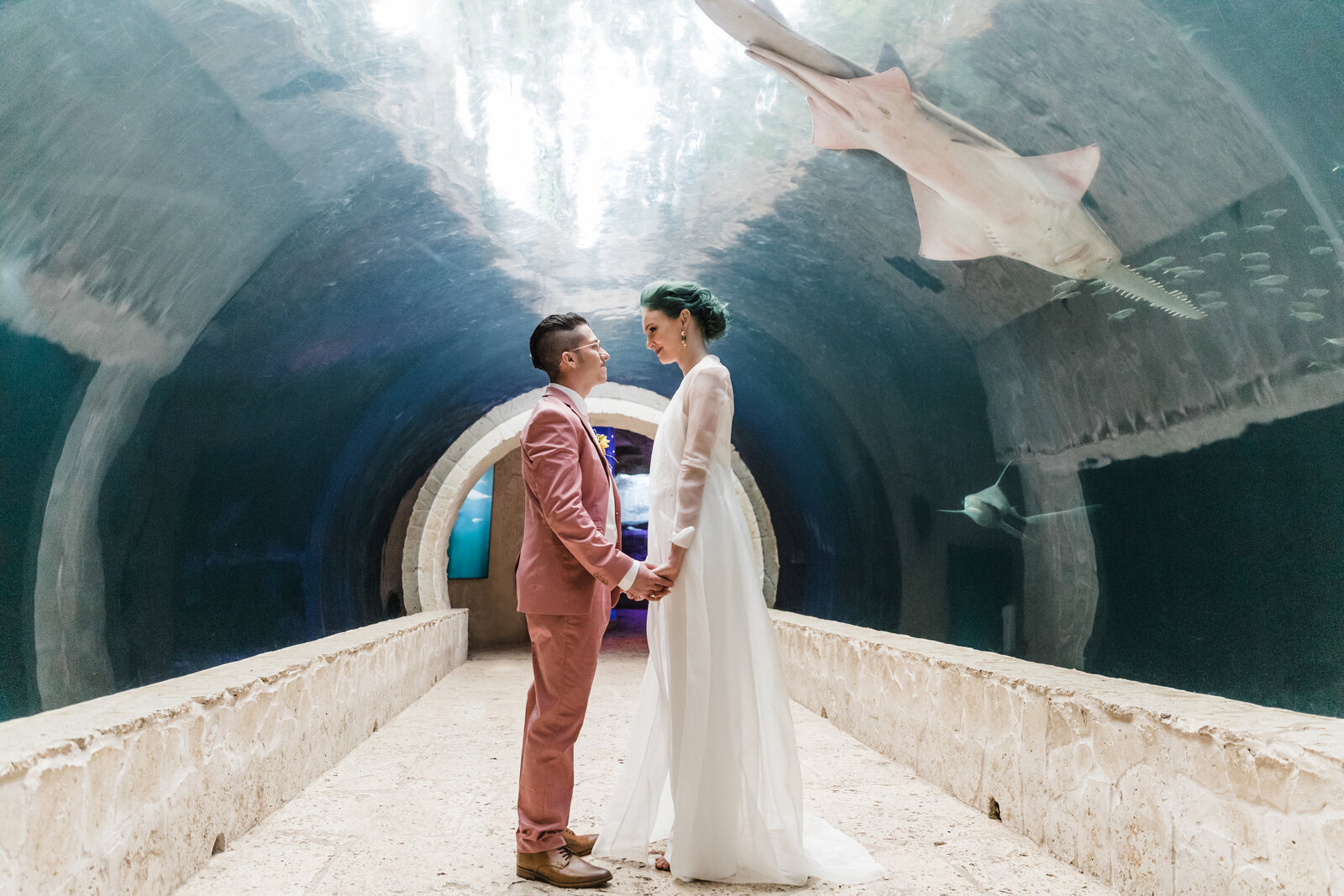 Dallas Aquarium Wedding
