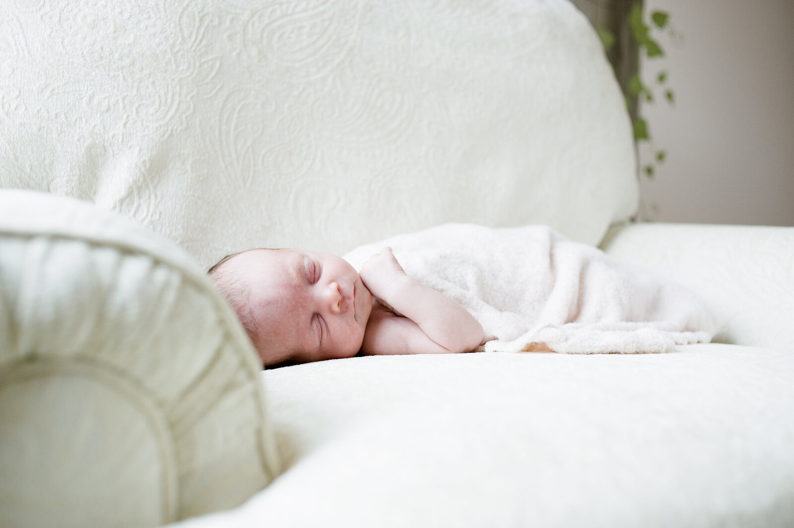 nashville_newborn_photographer_10
