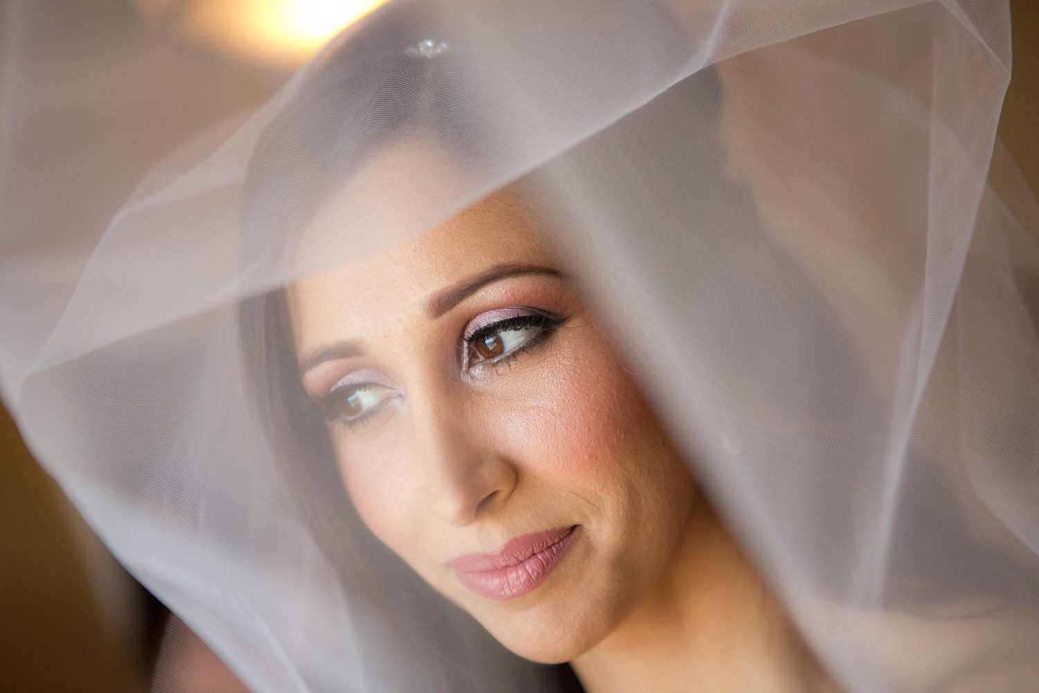 Creative bridal portrait with the wedding veil