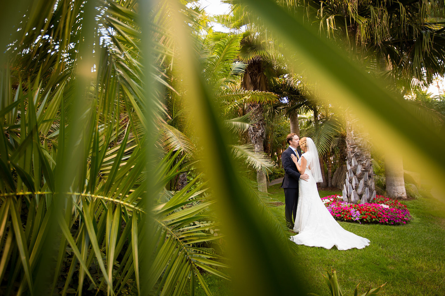 tropical plants with the bride and groom