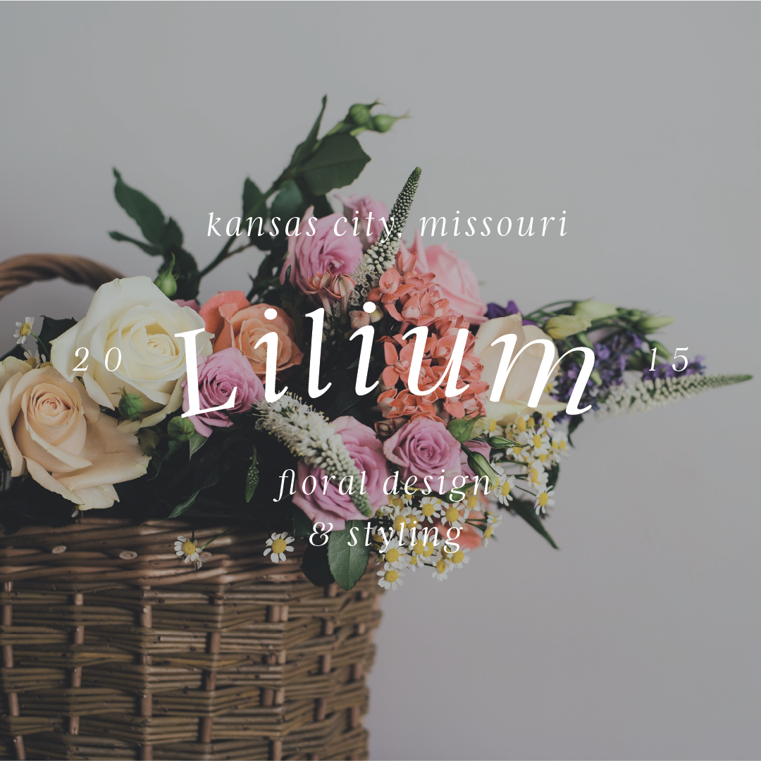 The Library_Lilium-Preview
