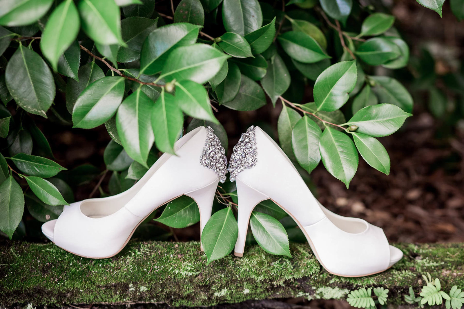 The bride's shoes sit by greenery, Magnolia Plantation, Charleston Wedding Photographer.