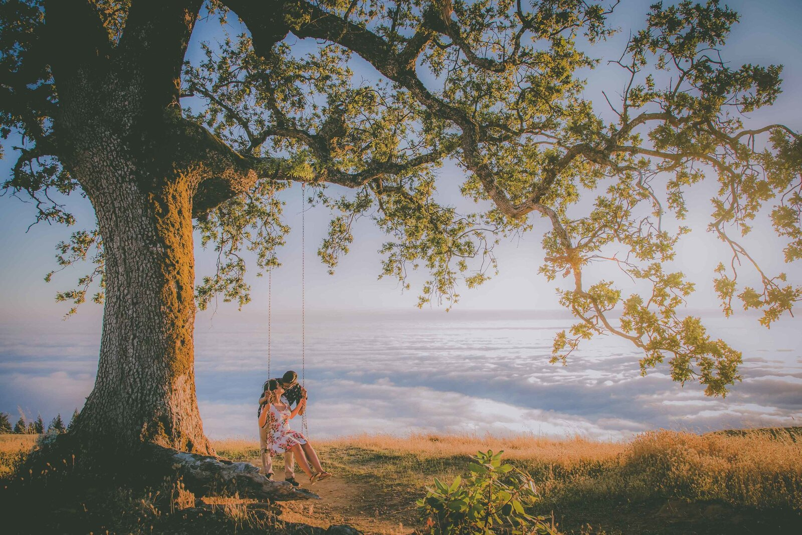 Couple kisses on swing set under a tree during sunset.