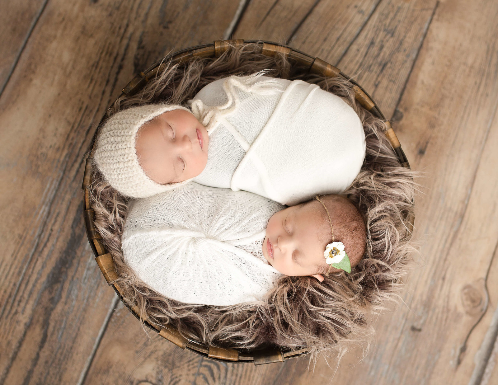 In studio newborn twins posed in Rochester, NY.