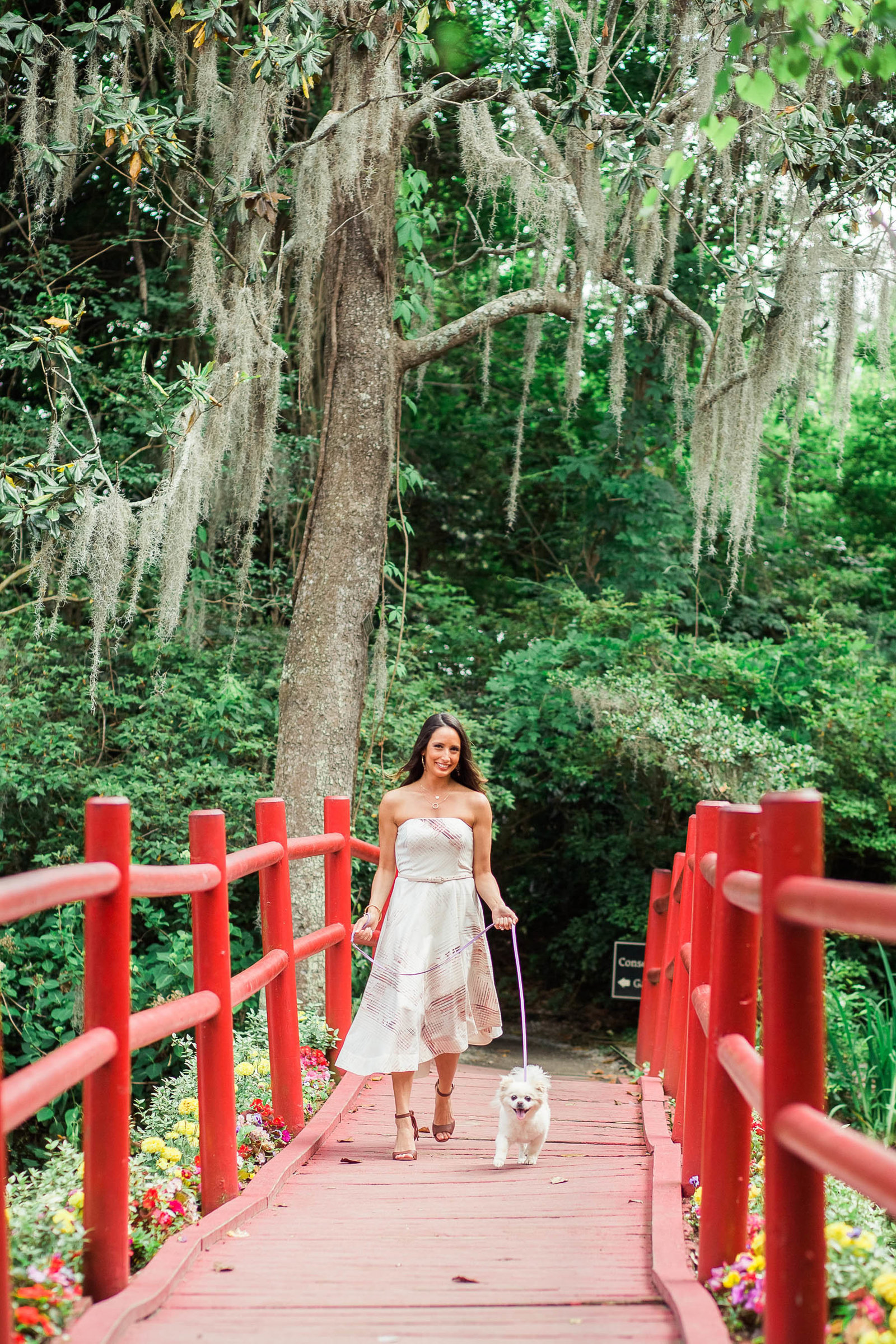 Bride to be walks her little Pomeranian dog down the red bridge, Magnolia Plantation, Charleston Engagement Photography.