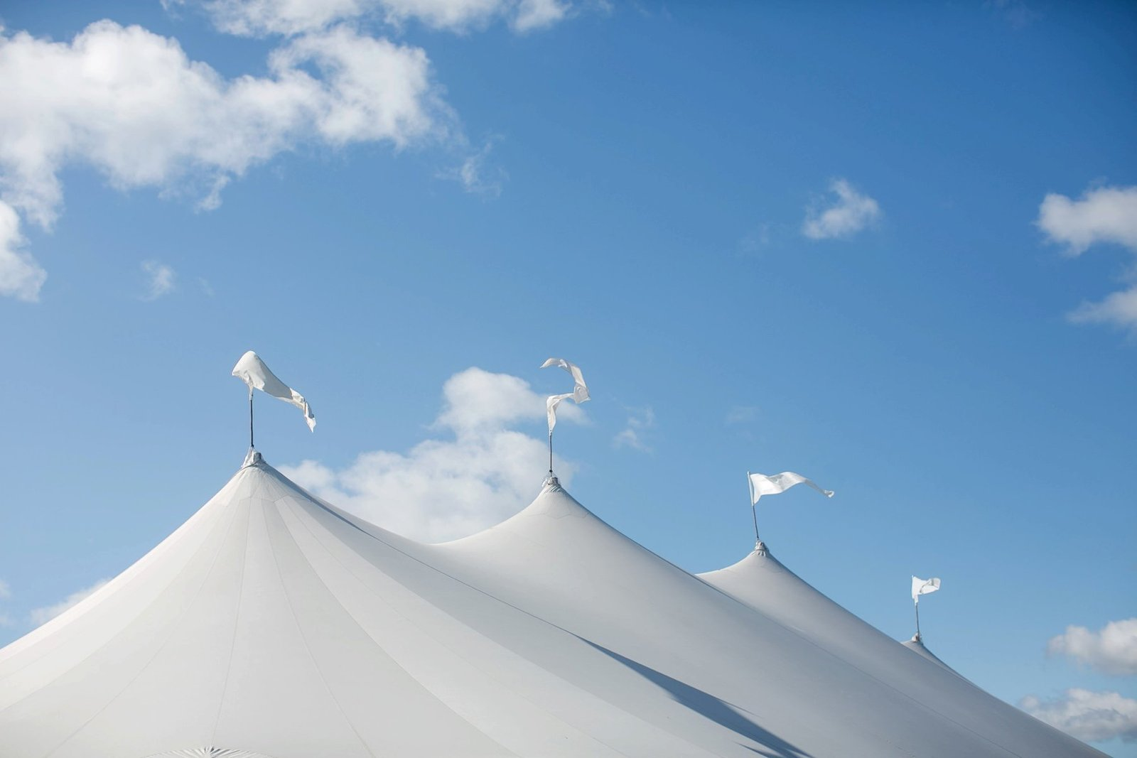 tented_home_wedding_ct_washington_0158