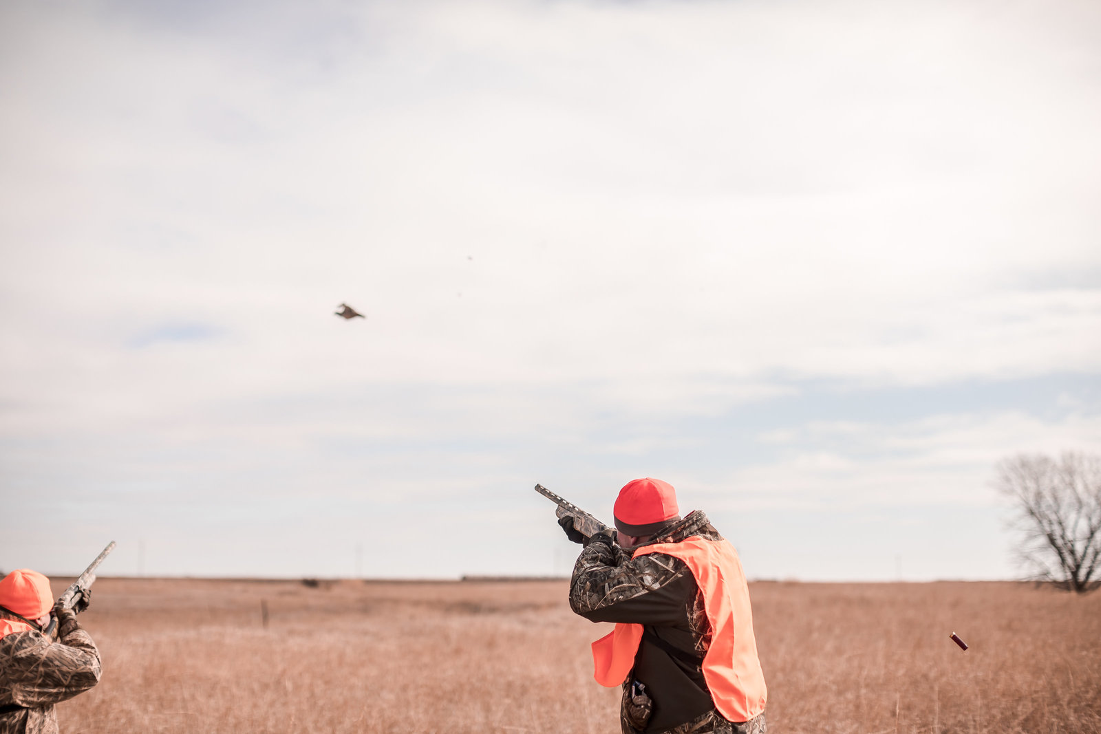 Fowl Plains Kansas Pheasant hunting117