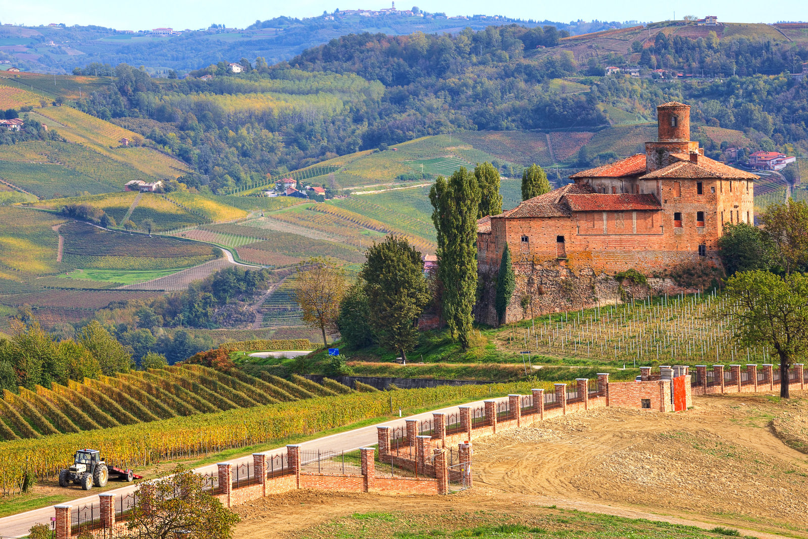 vineyards of Langhe in Piedmont, Northern Italy