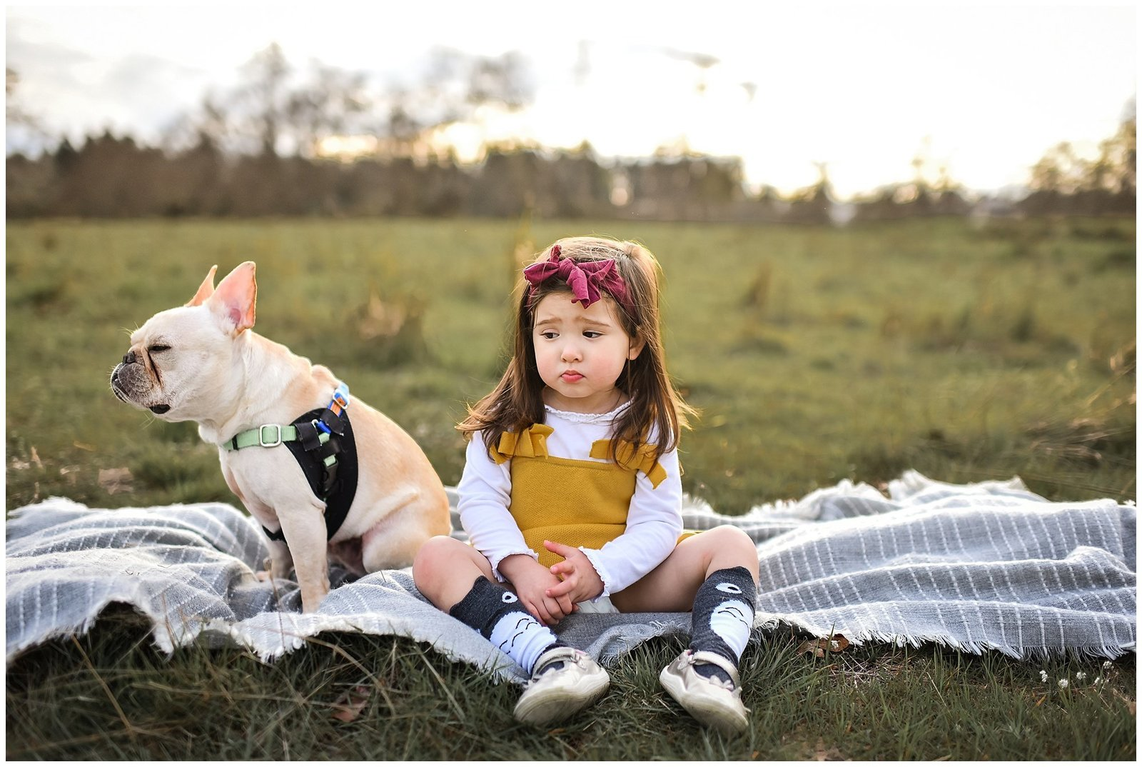 Little girl and french bulldog sitting field looking sad Emily Ann Photography Seattle Photographer.