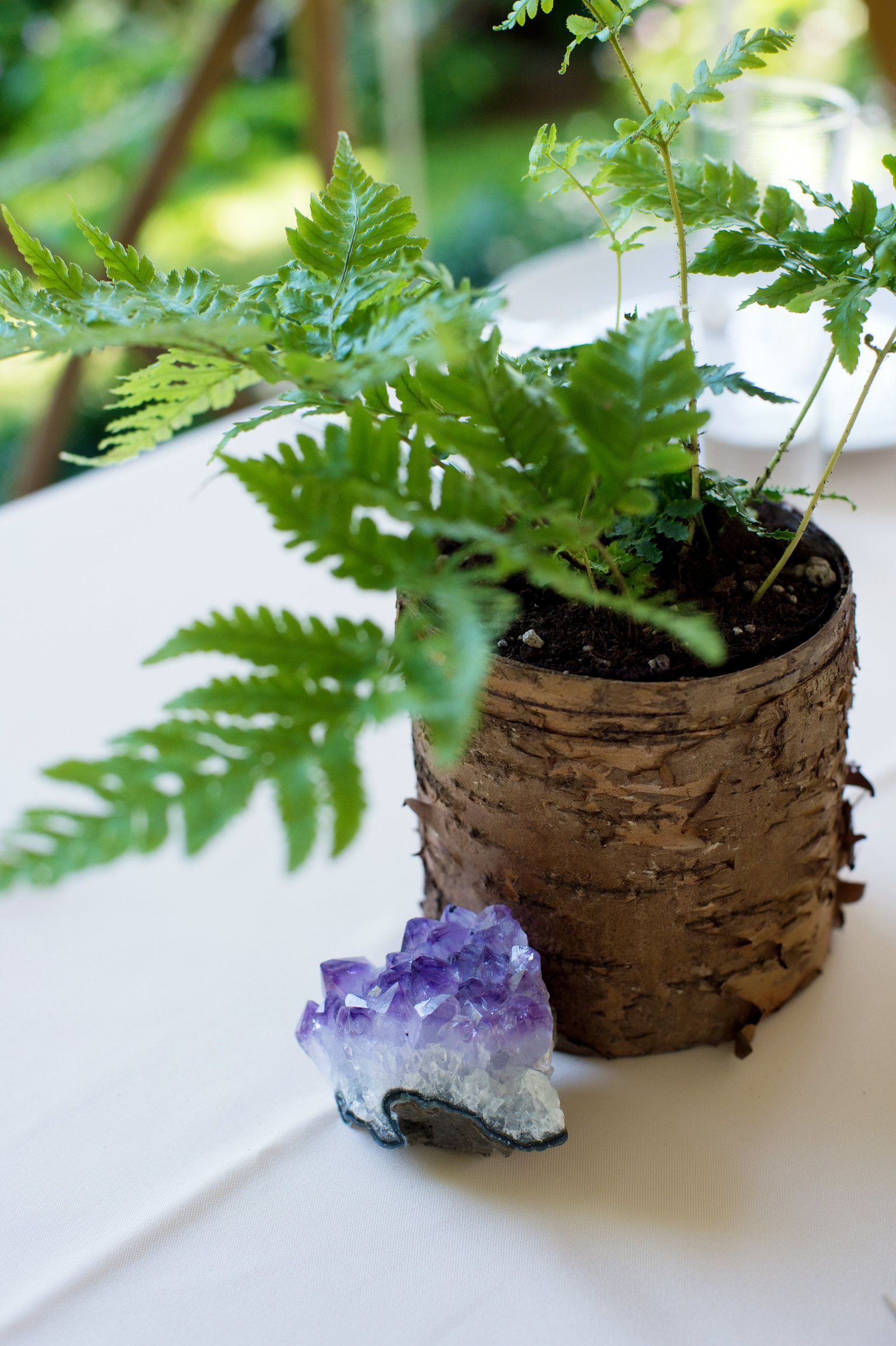 amethyst and a fern for the wedding table centerpieces
