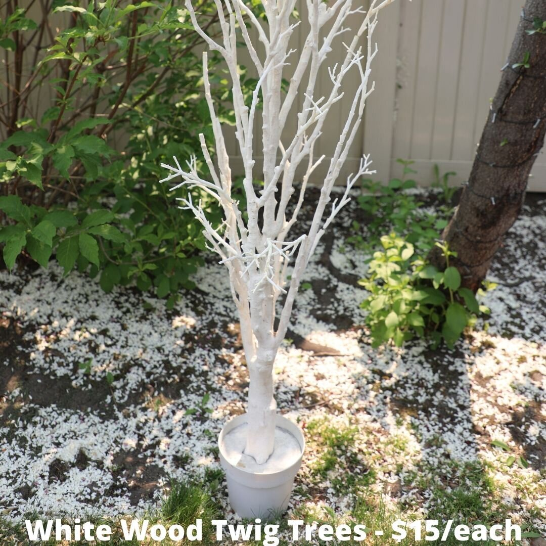 white twig trees