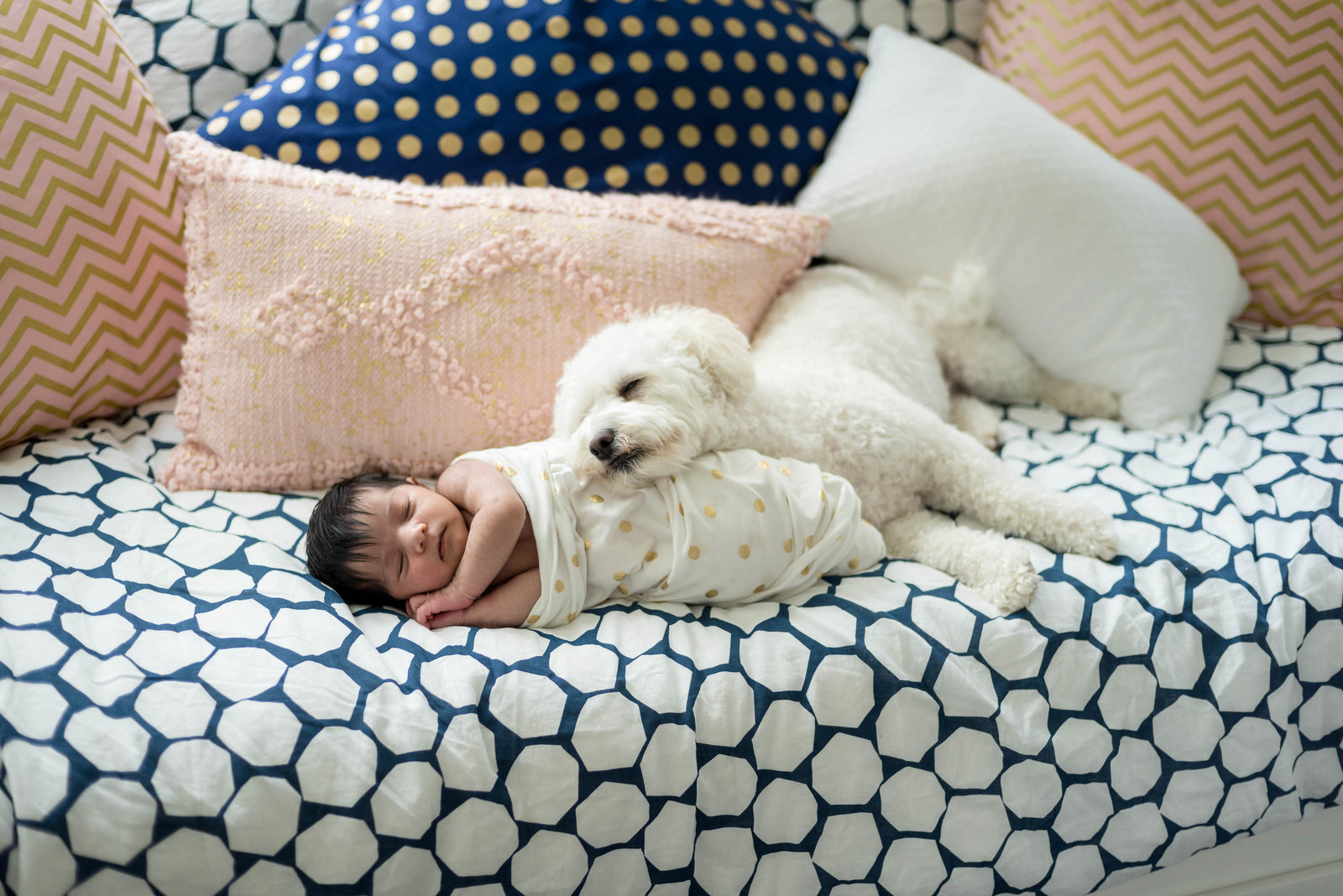 Boston-Newborn-Photographer-Lifestyle-Documentary-Home-Styled-Session-388