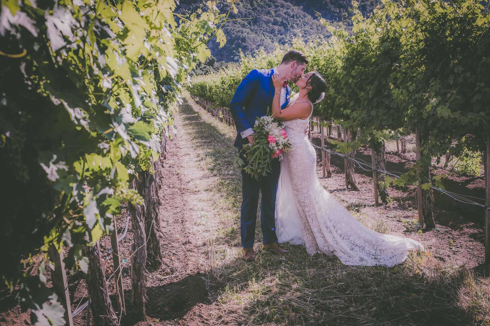A couple stop to kiss in a vineyard located in Carmel.