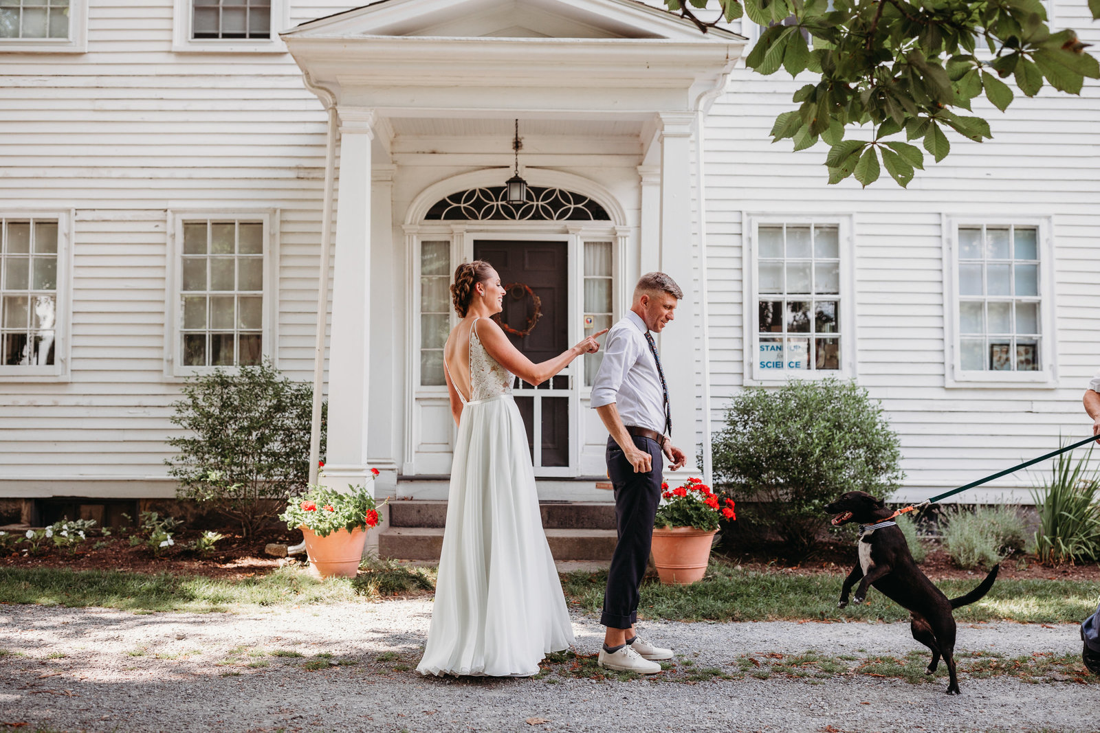bride and groom having a first look with dog in massachusetts farm wedding