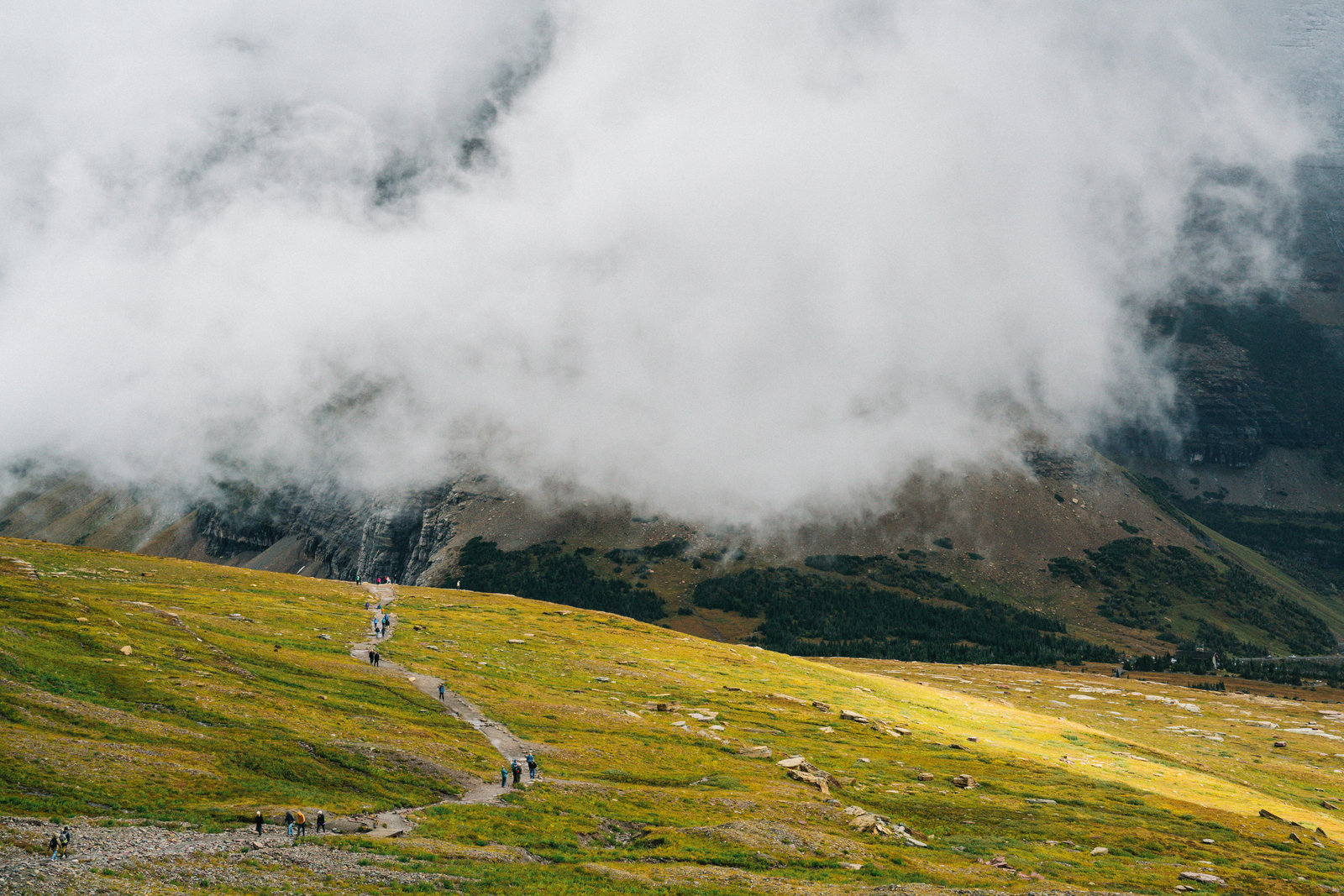 Sasha_Reiko_Photography_Travel_Glacier_National_Park-33