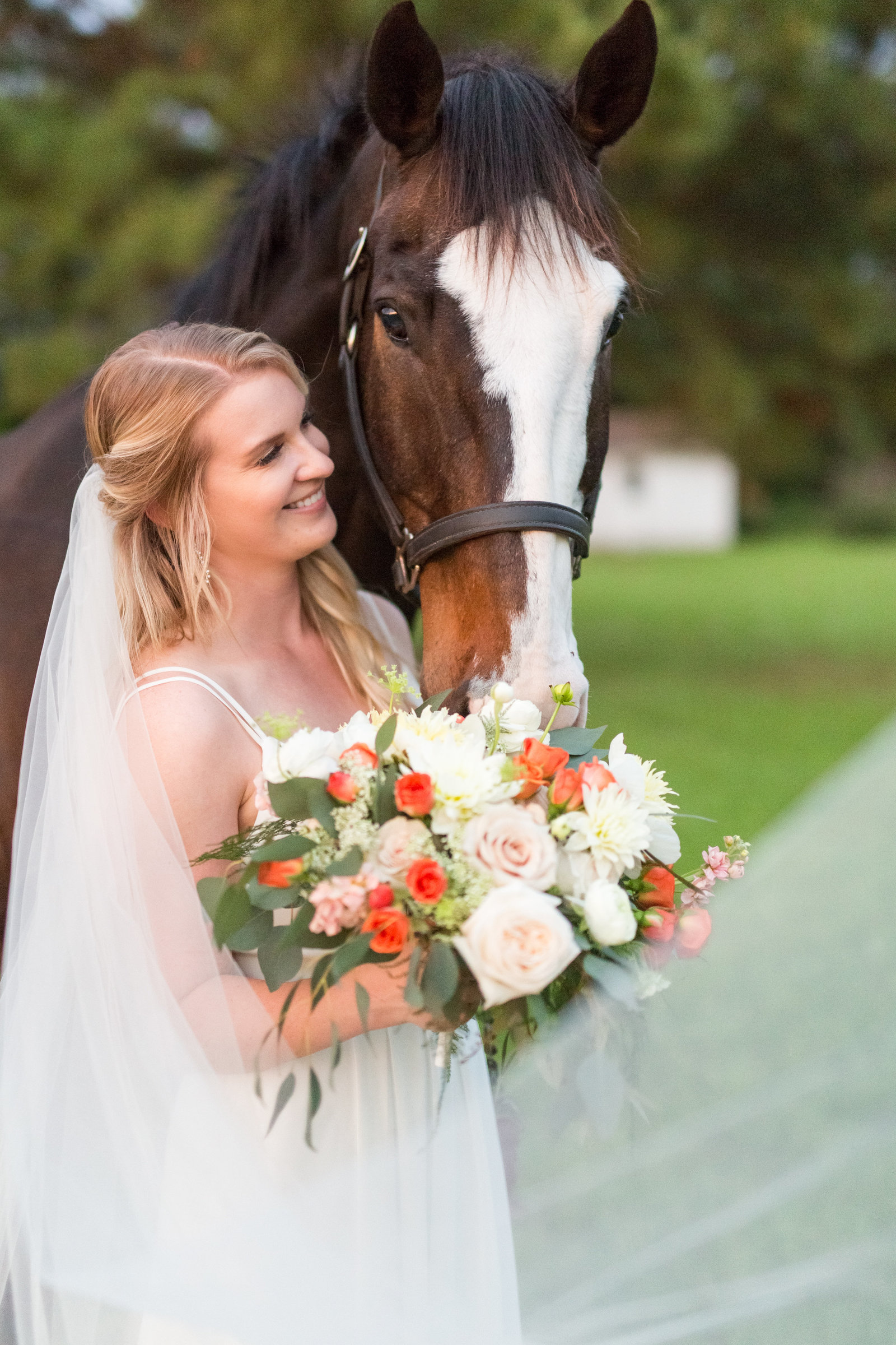 bride with horse-1