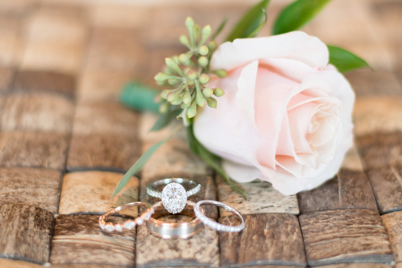 charlotte wedding photographer shot of Detail shot of wedding rings and rose