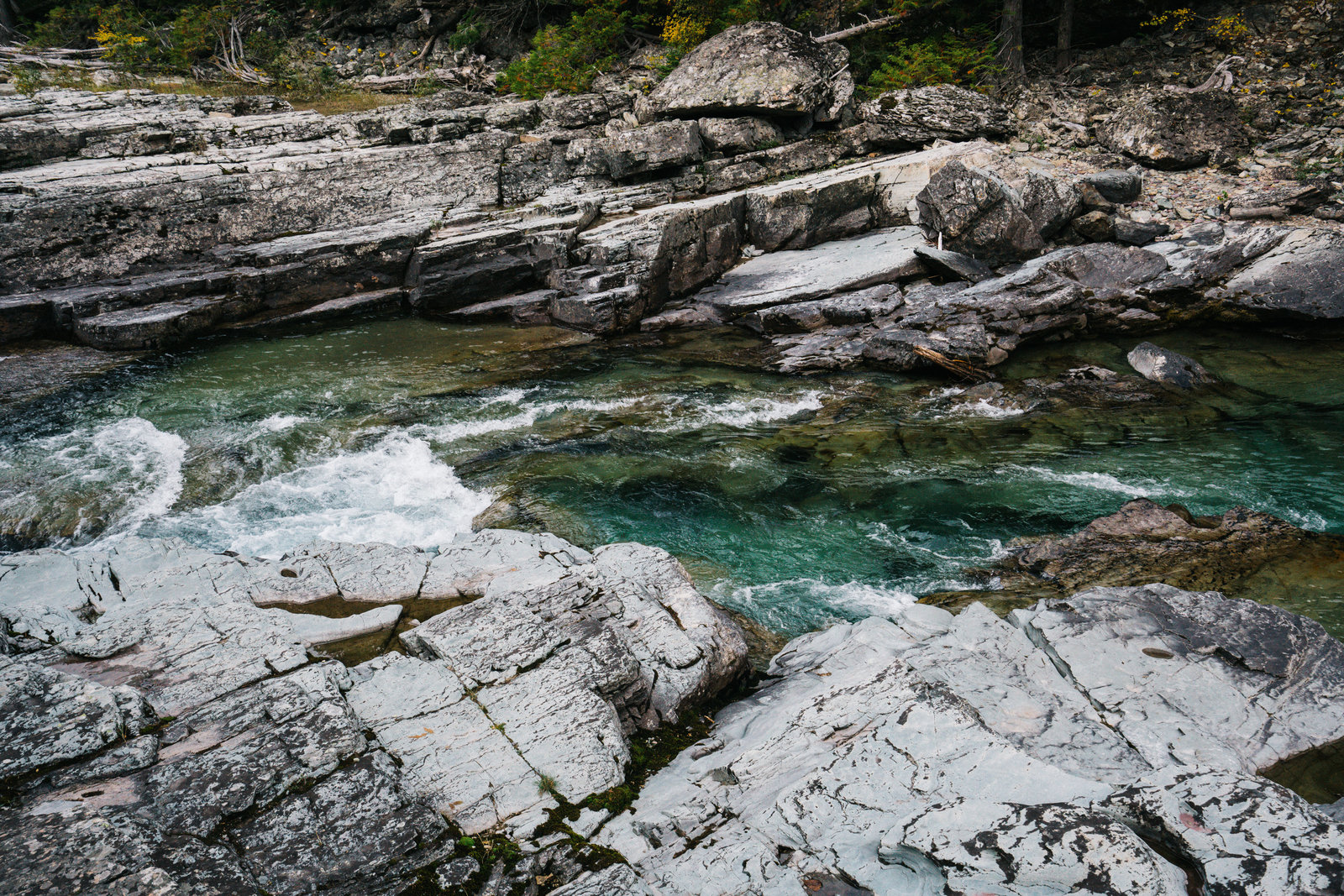 Sasha_Reiko_Photography_Travel_Glacier_National_Park-11