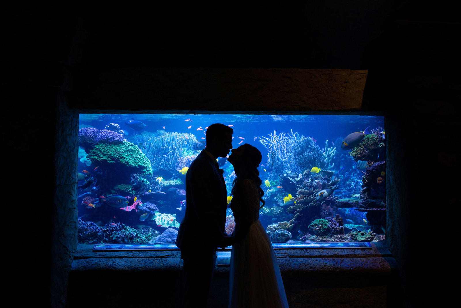Bride and groom kissing in front of fish tank at Atlantis Banquet and Events