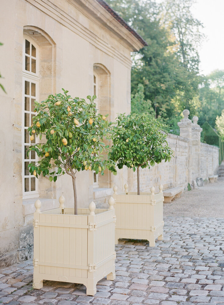Outside of an orangerie with stone flooring and lemon trees in pots