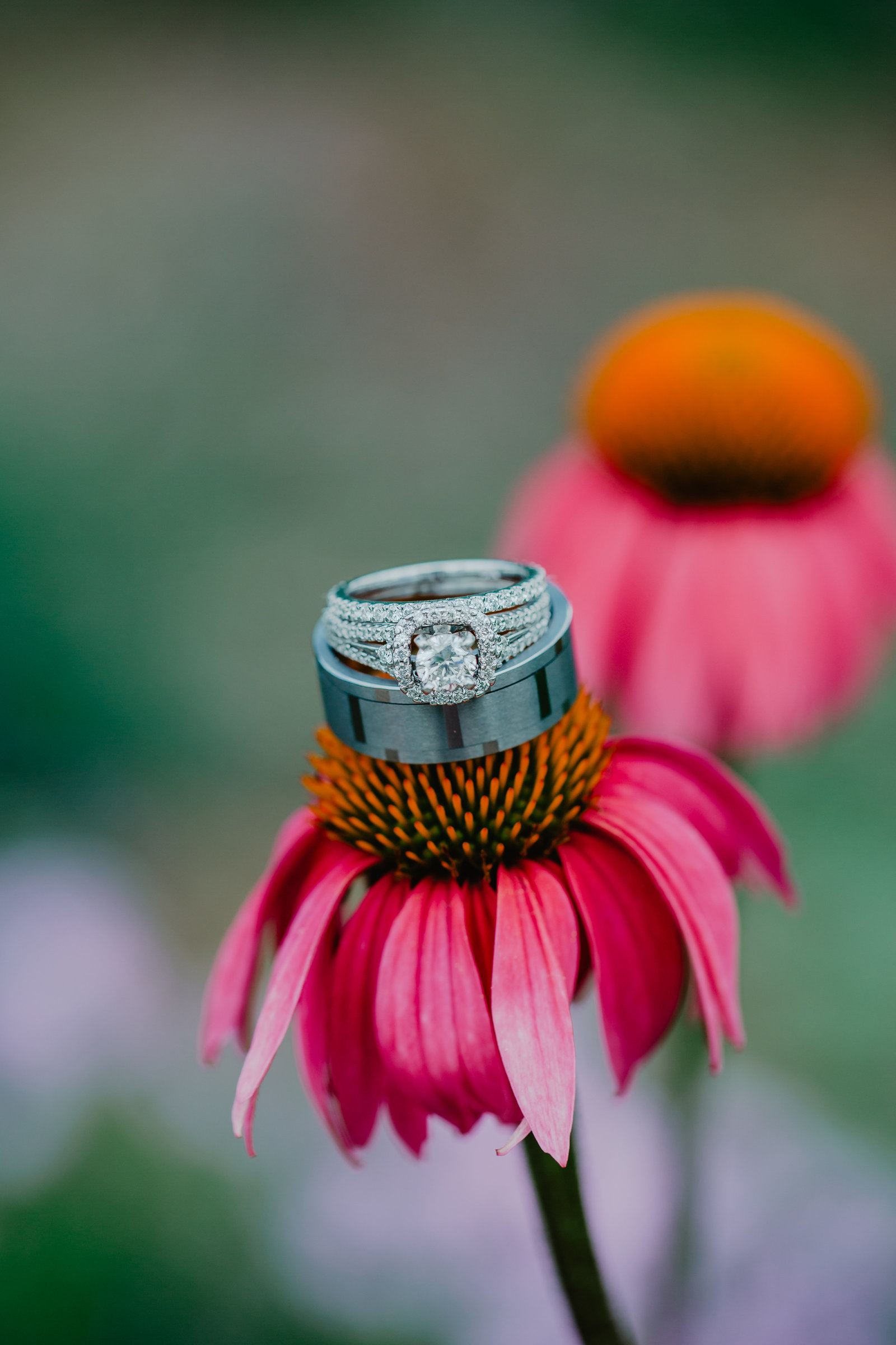 Wedding rings placed upon a pink flower.