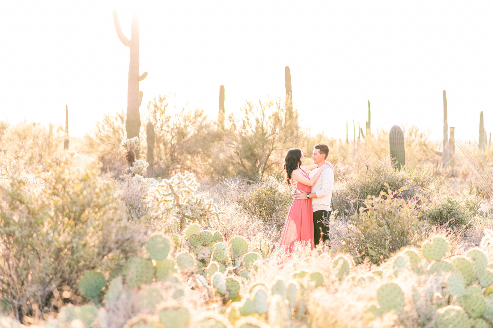 epic portrait of engaged couple in Tucson desert