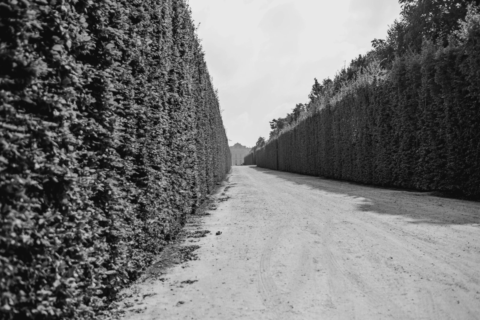 hedge-path-palace-versailles-france-travel-destination-kate-timbers-photography-1664