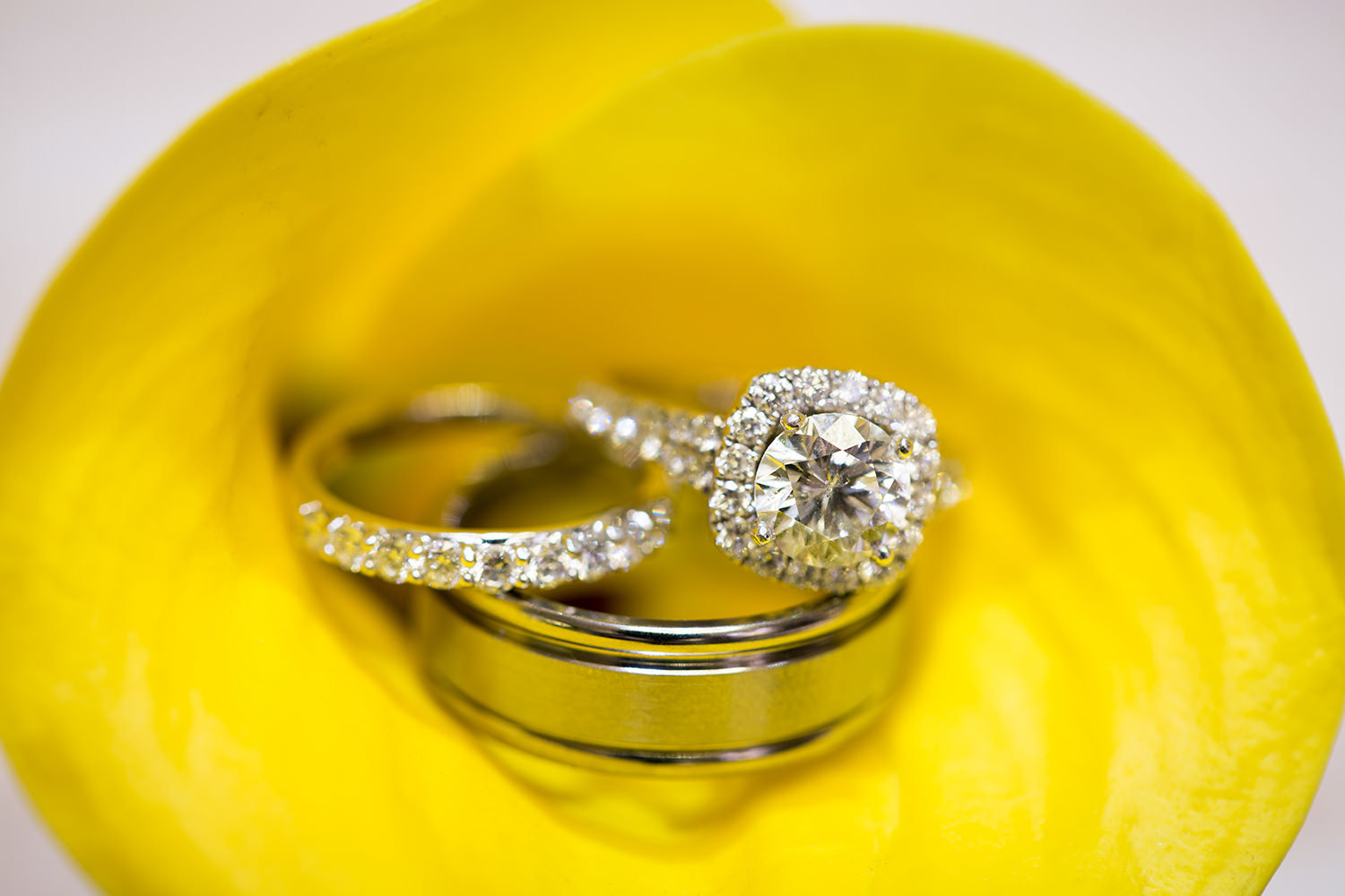 Wedding rings inside a Lilly