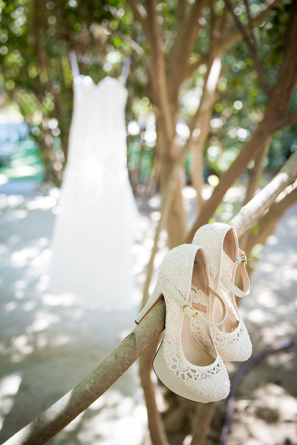 bridal shoes hanging in tree