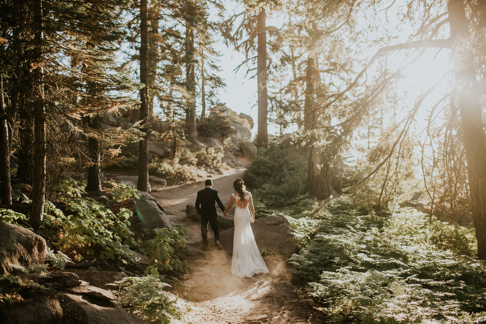 Yosemite CA Elopement Sunset Forest