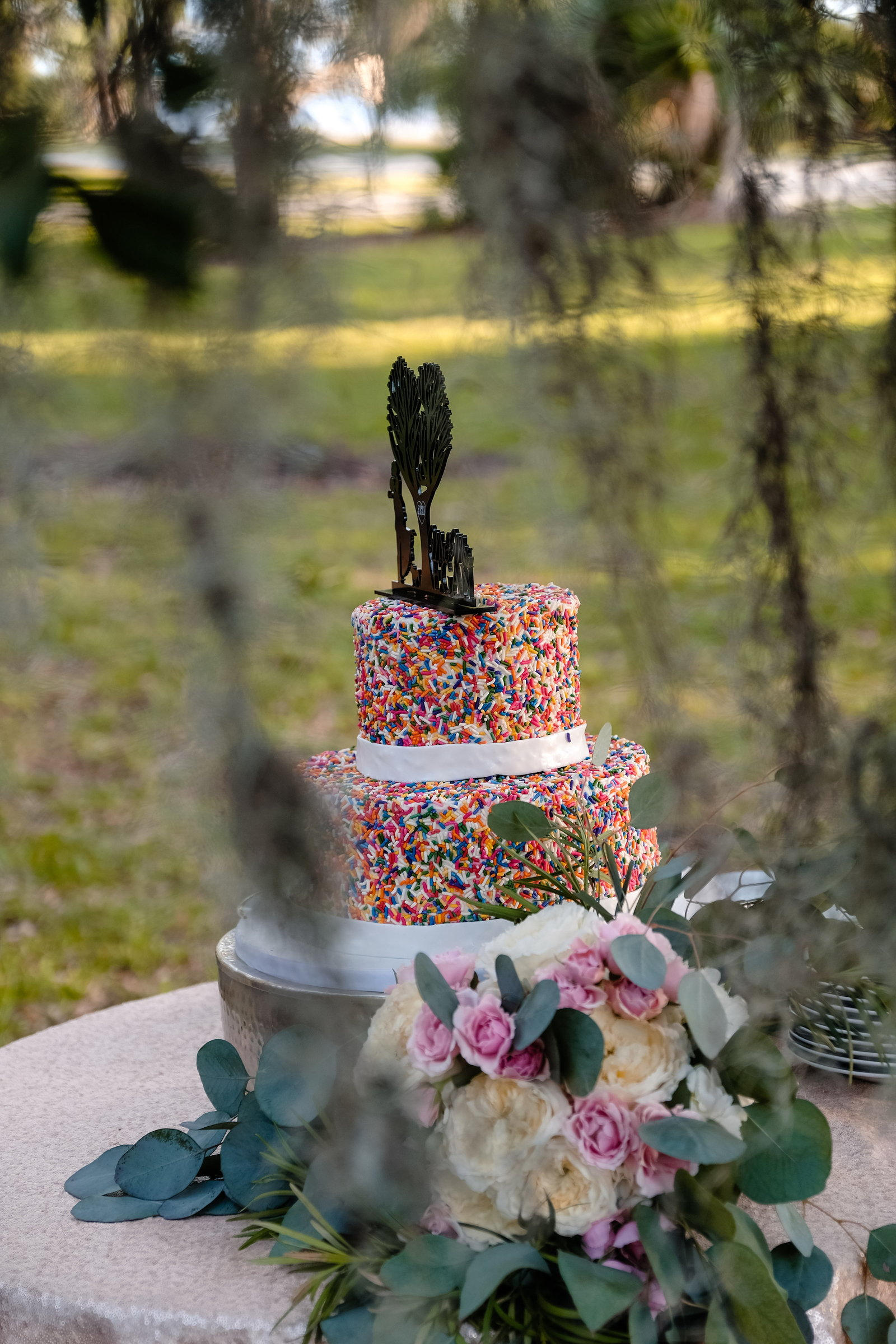 Jekyll Island Wedding, sprinkles wedding cake, Bobbi Brinkman Photography