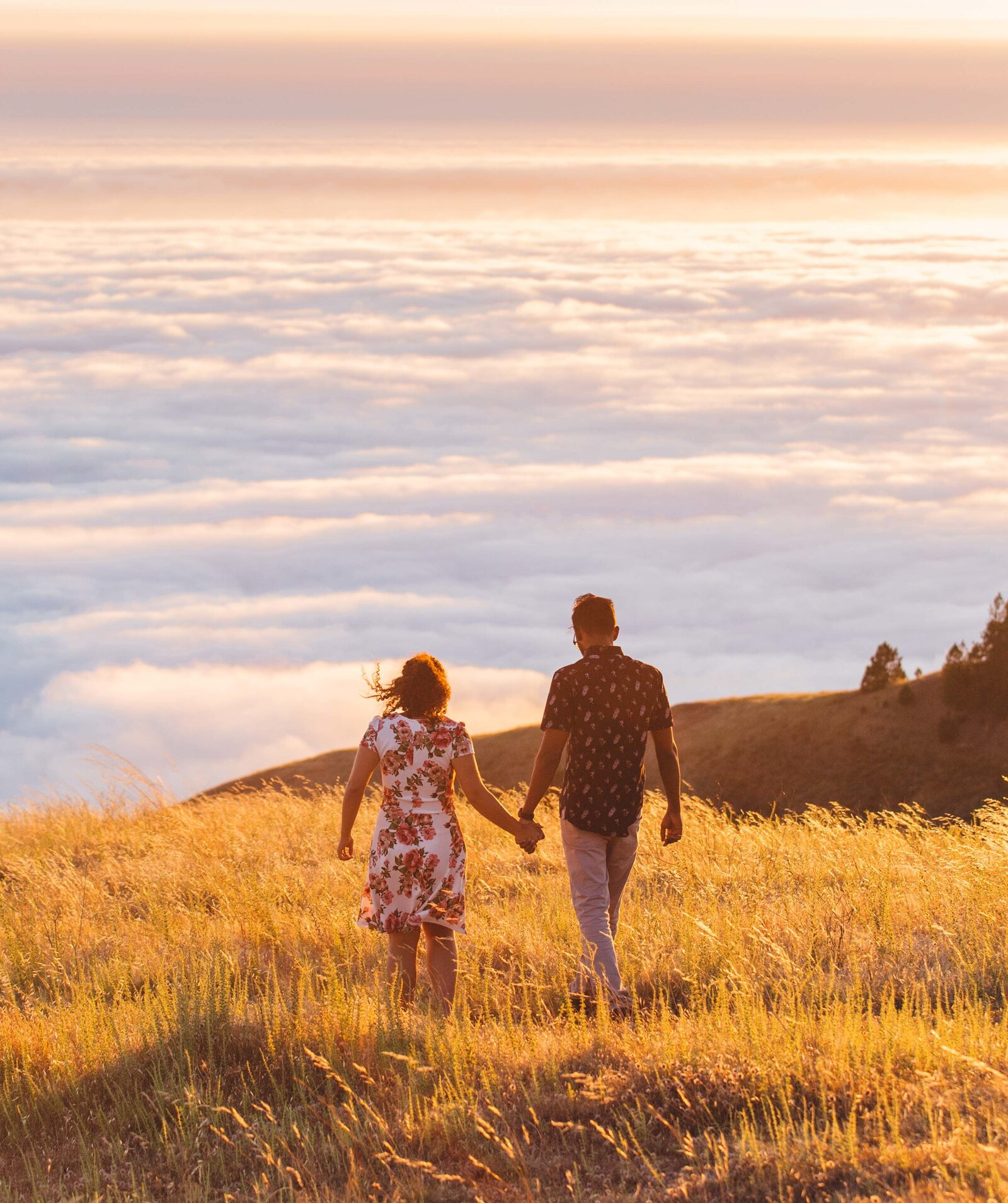 Couple walks in sunset lit field in Big Sur.