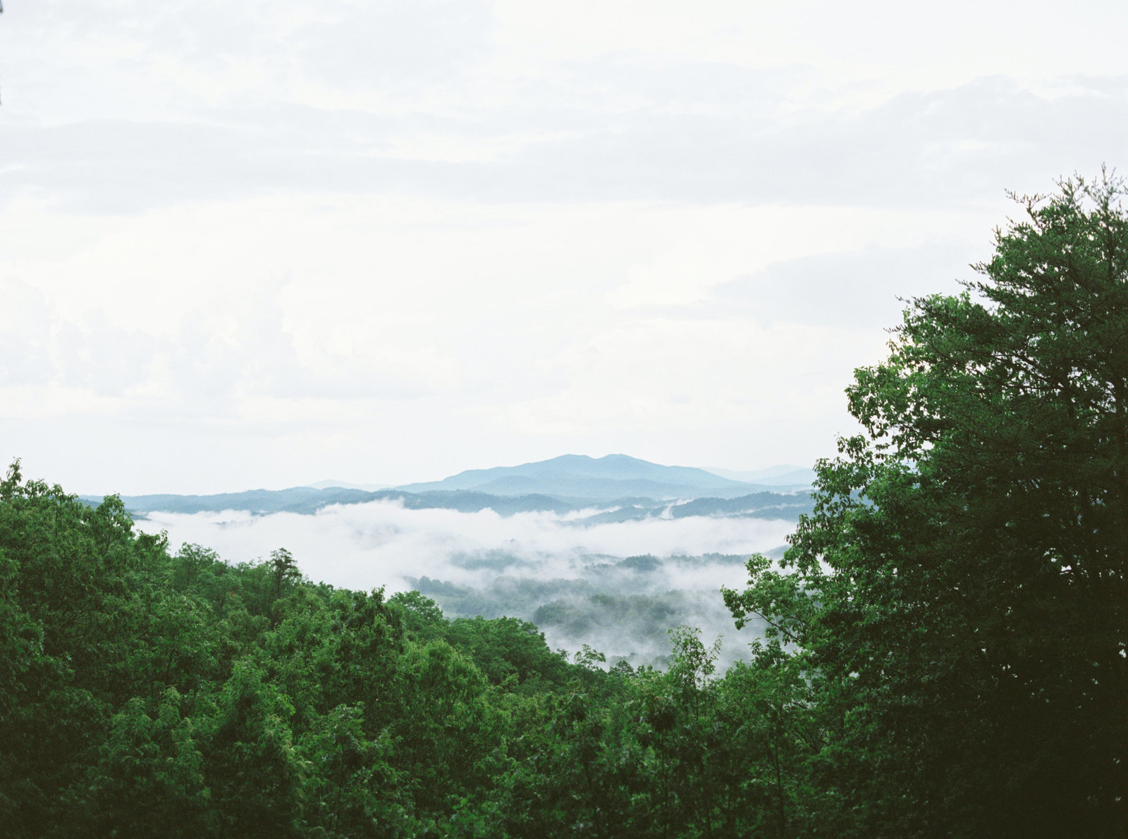 Smoky Mountains Wedding Photographer_Engagement Photographer_Tiffany Danielle Photography (3)