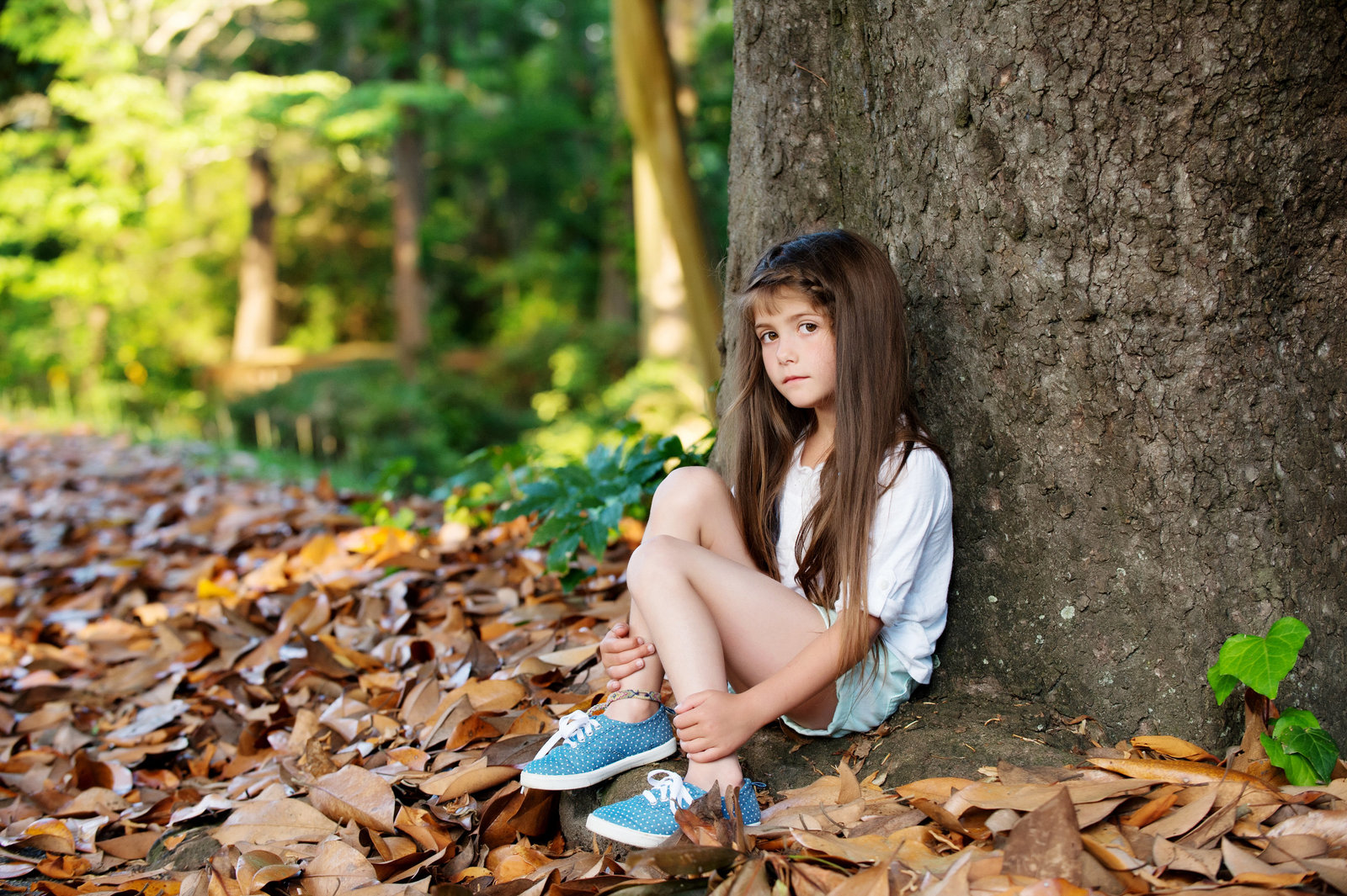 a girl sits in front of a tree in autum