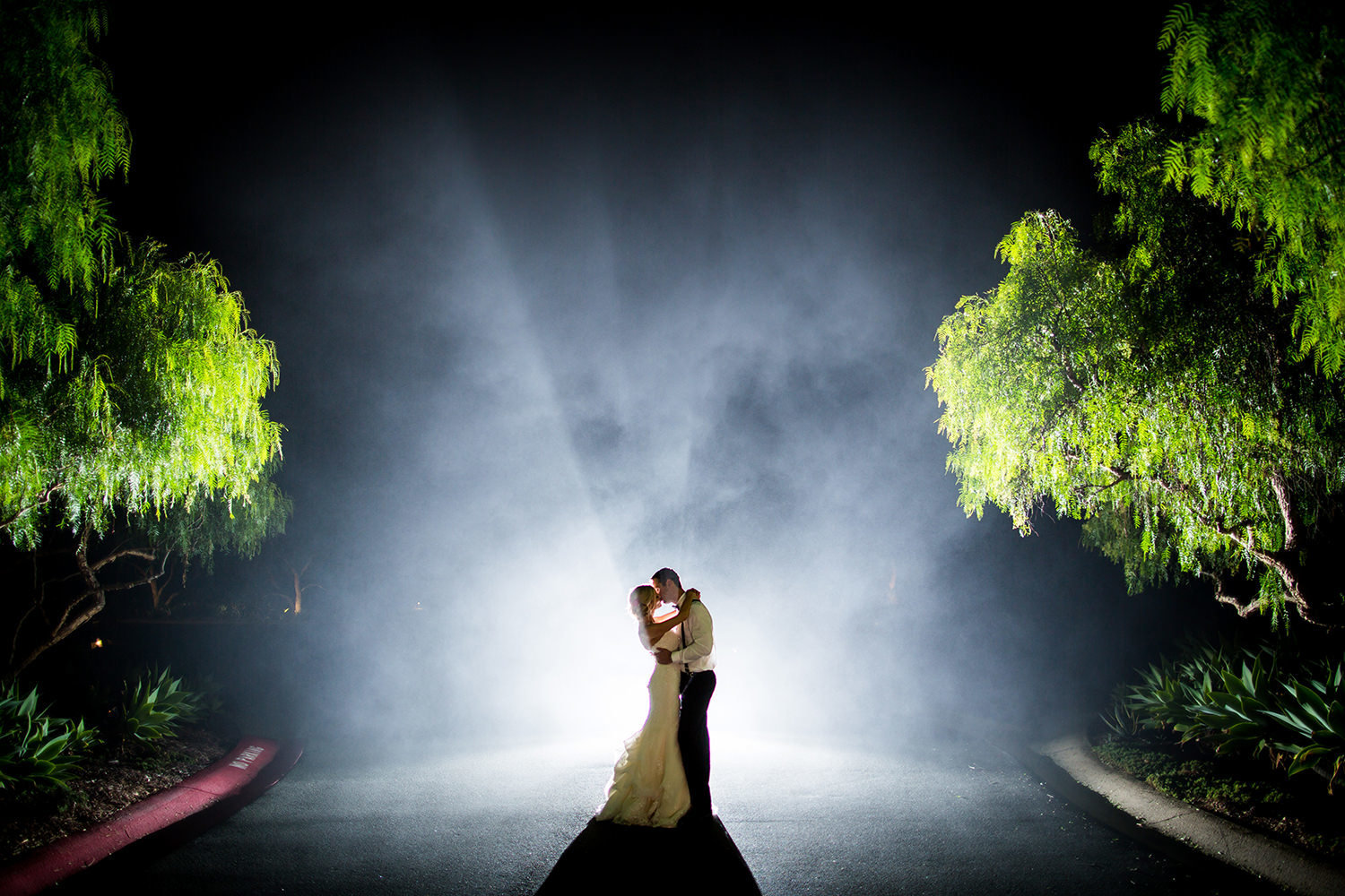Foggy night time portrait of bride and groom