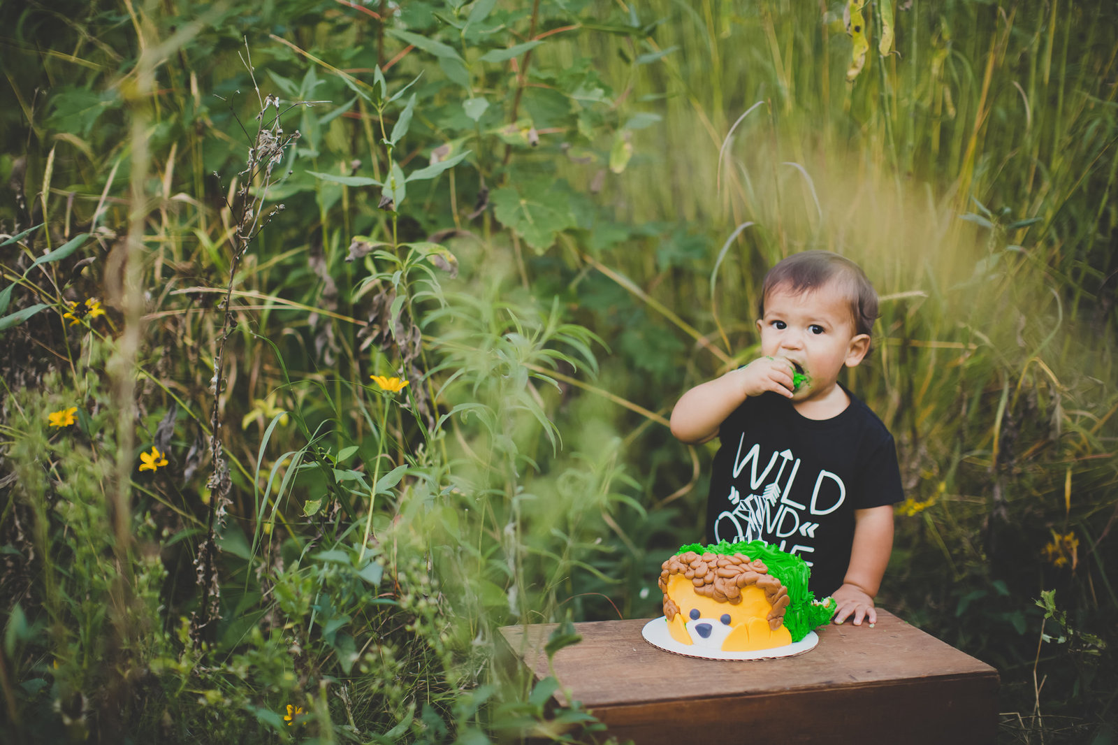 Little boy celebrating his first birthday with a cake smash in the Iowa prairie