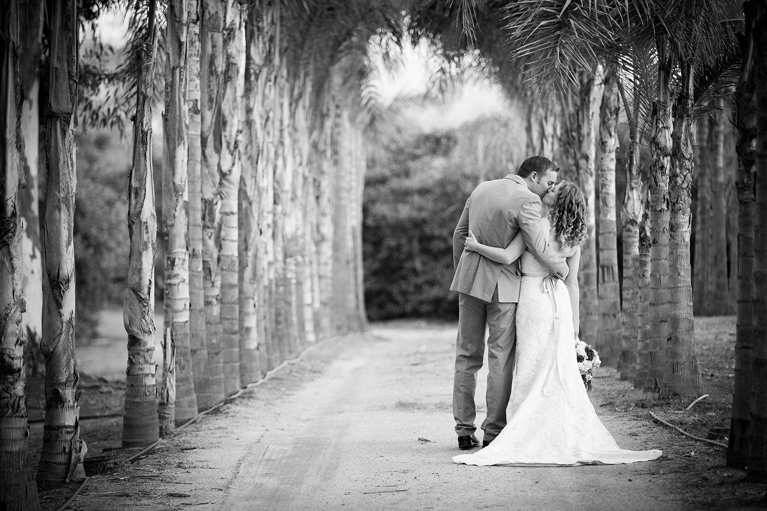 black and white romantic shot by the palm trees