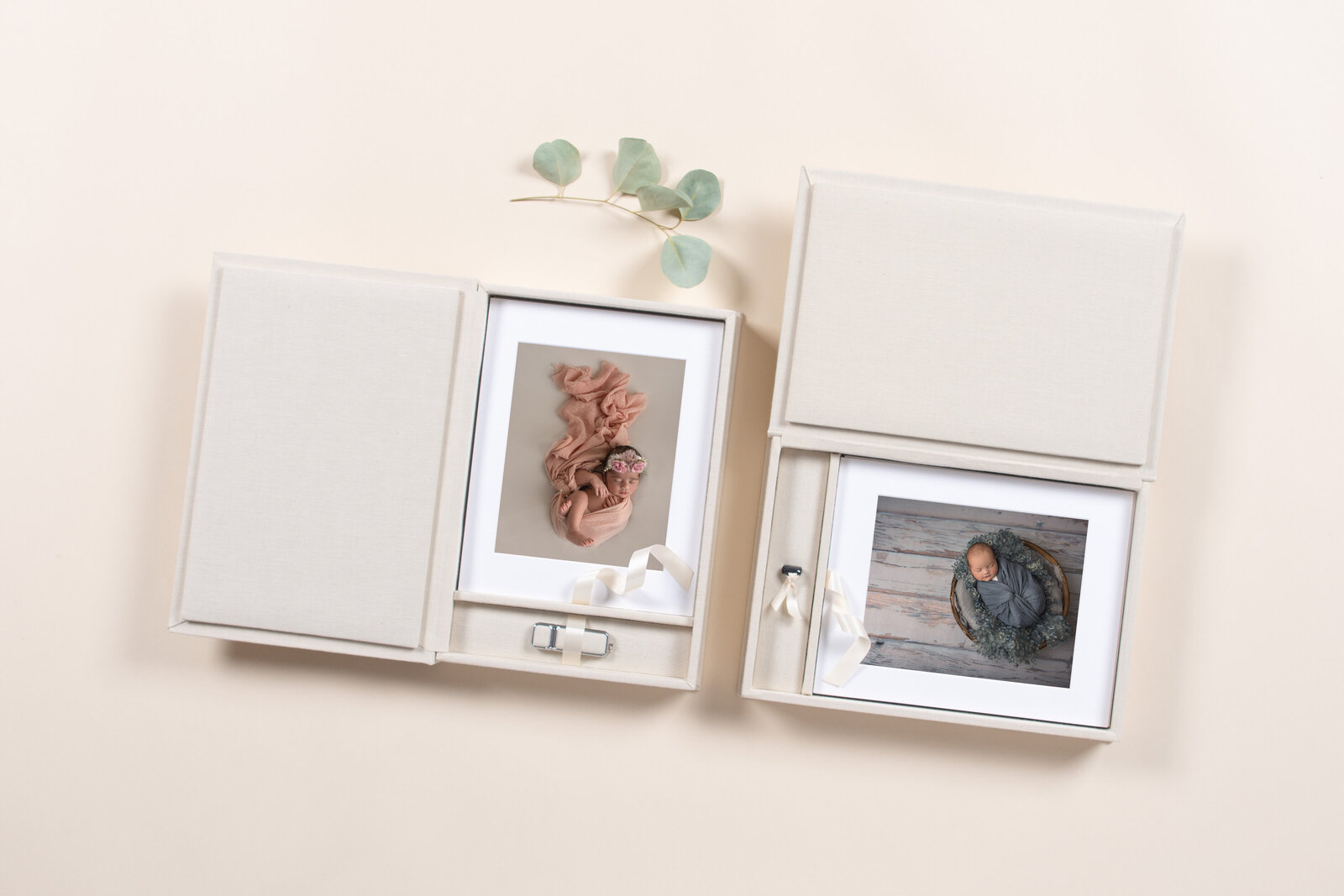Printed Portrait Box with Matted Photographs