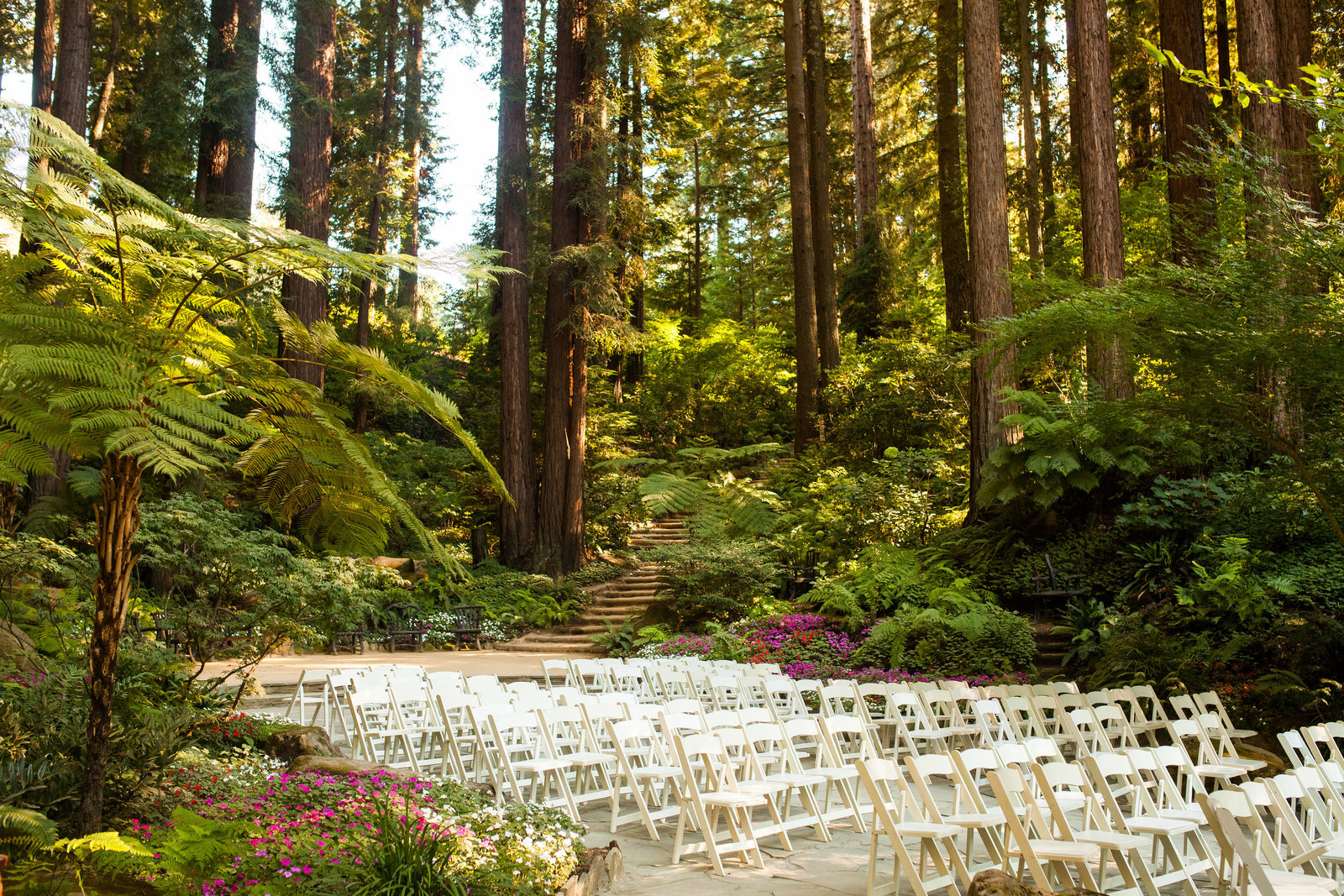 nestldown wedding forest los gatos california 10